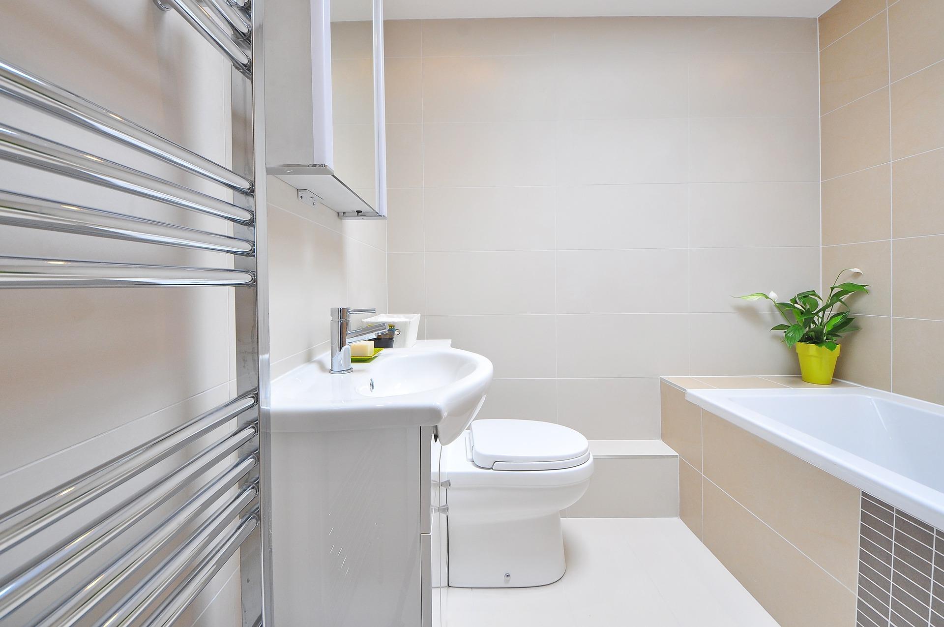 bathroom-1336164_1920 (1)